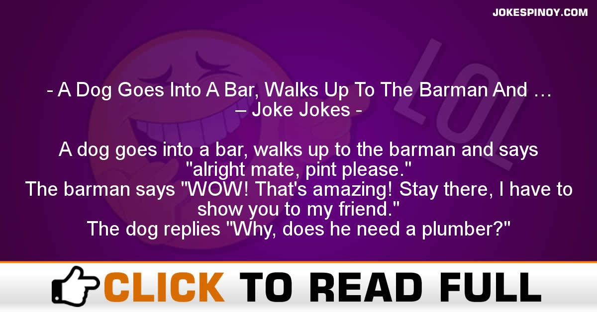 A Dog Goes Into A Bar, Walks Up To The Barman And … – Joke Jokes
