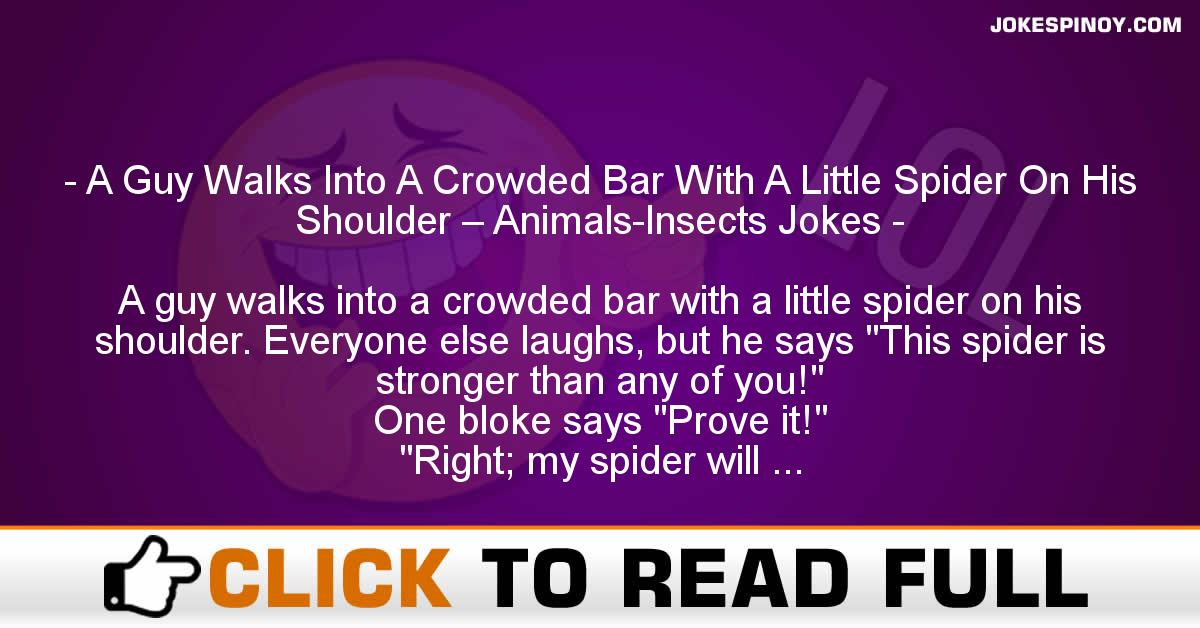 A Guy Walks Into A Crowded Bar With A Little Spider On His Shoulder – Animals-Insects Jokes