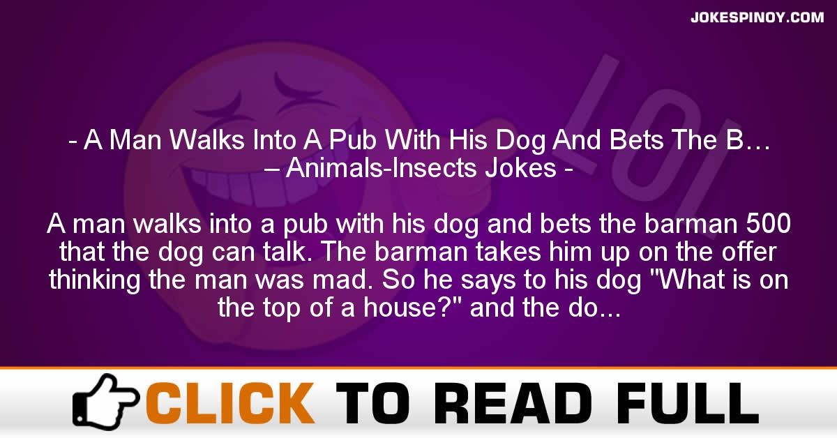 A Man Walks Into A Pub With His Dog And Bets The B… – Animals-Insects Jokes