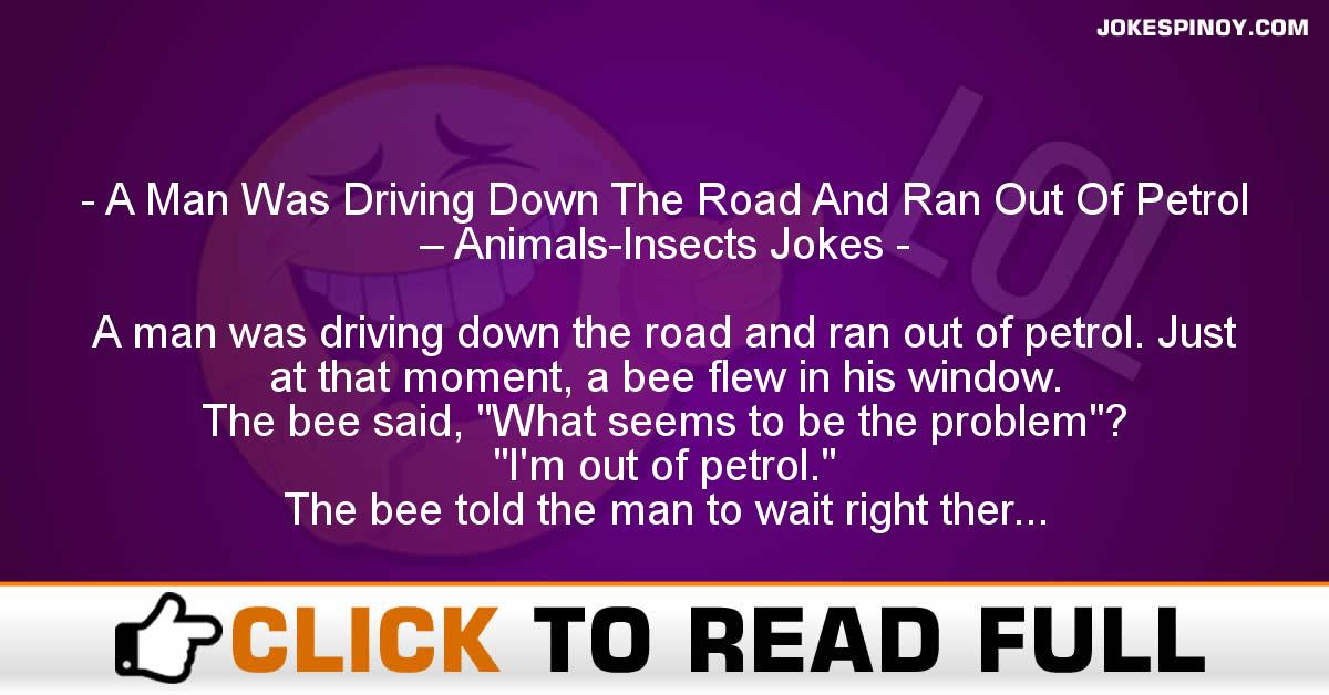 A Man Was Driving Down The Road And Ran Out Of Petrol – Animals-Insects Jokes