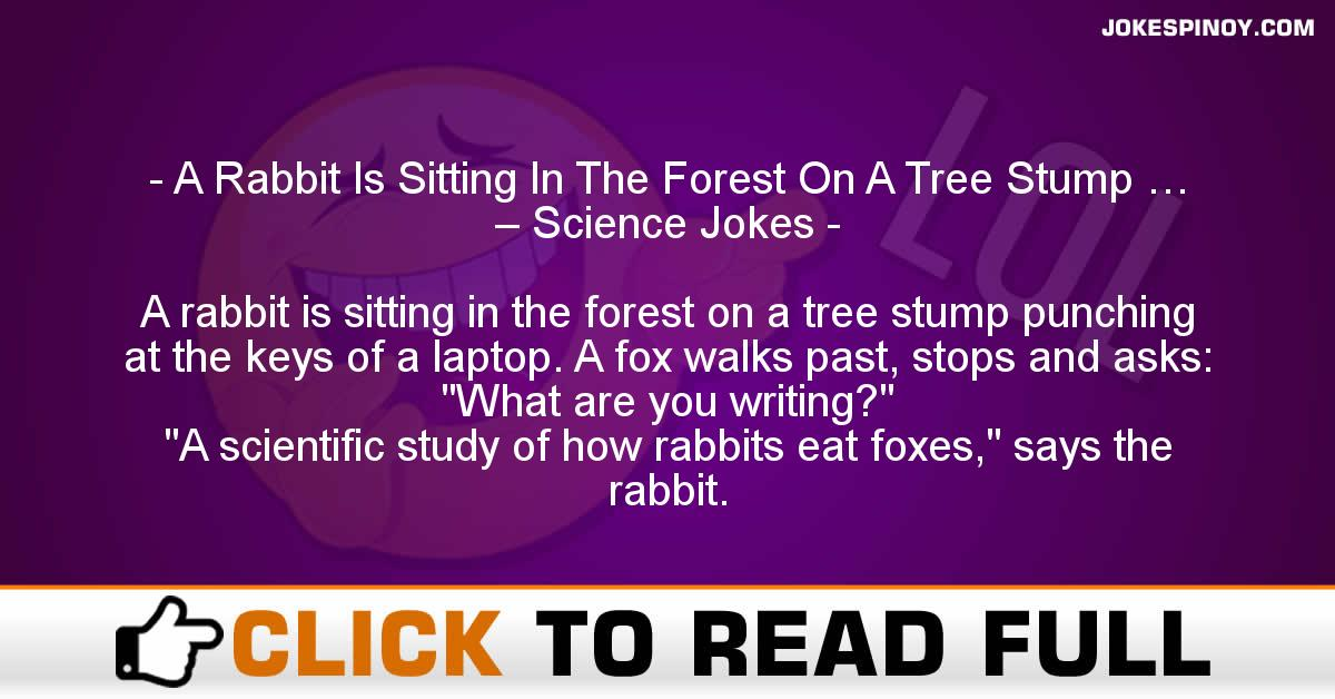 A Rabbit Is Sitting In The Forest On A Tree Stump … – Science Jokes