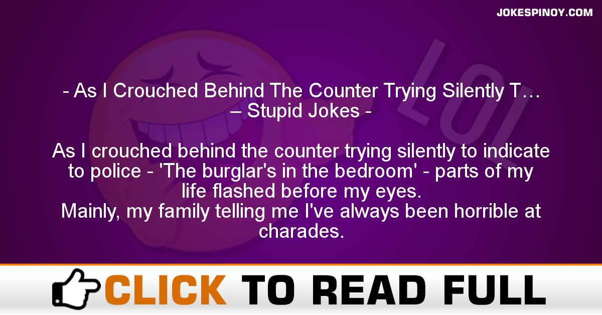 As I Crouched Behind The Counter Trying Silently T… – Stupid Jokes