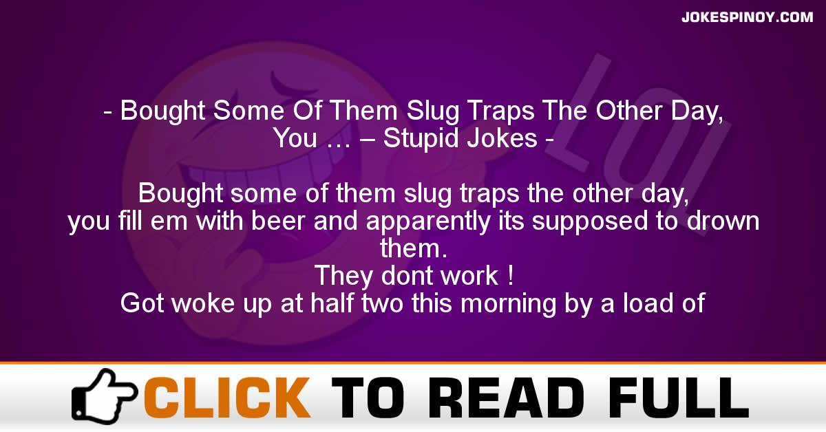 Bought Some Of Them Slug Traps The Other Day, You … – Stupid Jokes