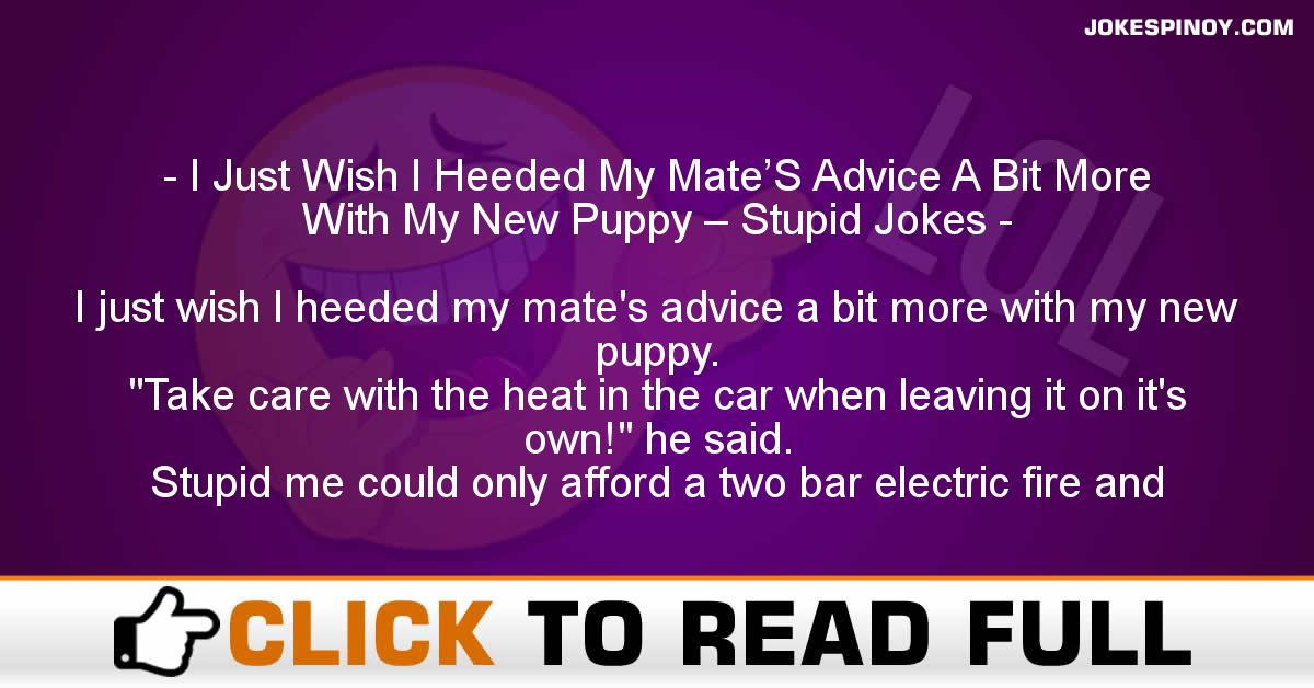I Just Wish I Heeded My Mate'S Advice A Bit More With My New Puppy – Stupid Jokes