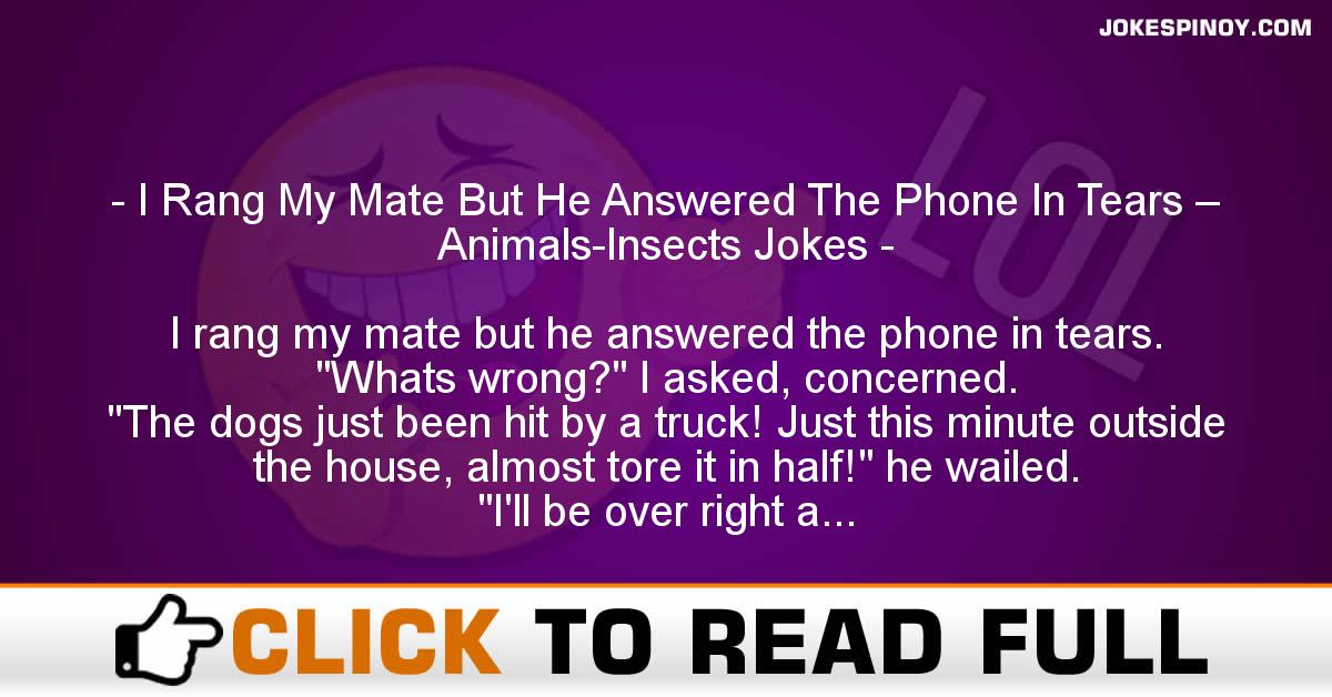 I Rang My Mate But He Answered The Phone In Tears – Animals-Insects Jokes