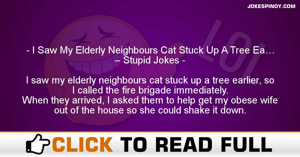 I Saw My Elderly Neighbours Cat Stuck Up A Tree Ea… – Stupid Jokes