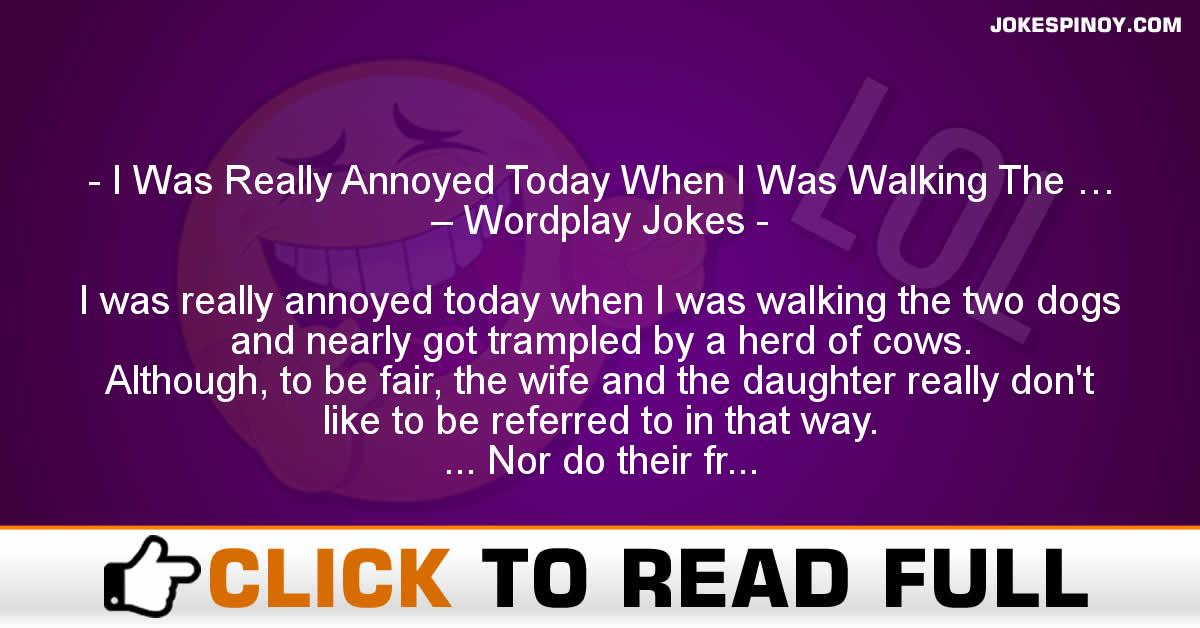 I Was Really Annoyed Today When I Was Walking The … – Wordplay Jokes