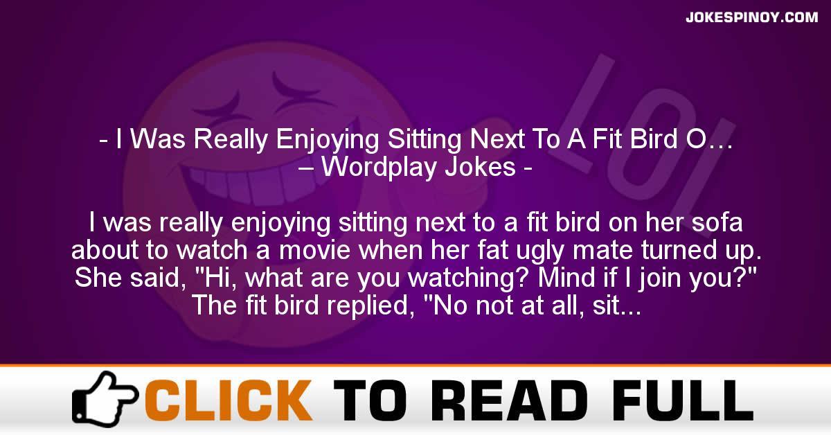 I Was Really Enjoying Sitting Next To A Fit Bird O… – Wordplay Jokes