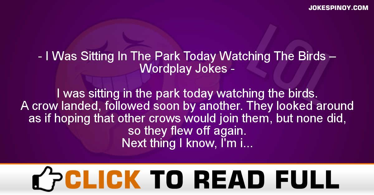 I Was Sitting In The Park Today Watching The Birds – Wordplay Jokes