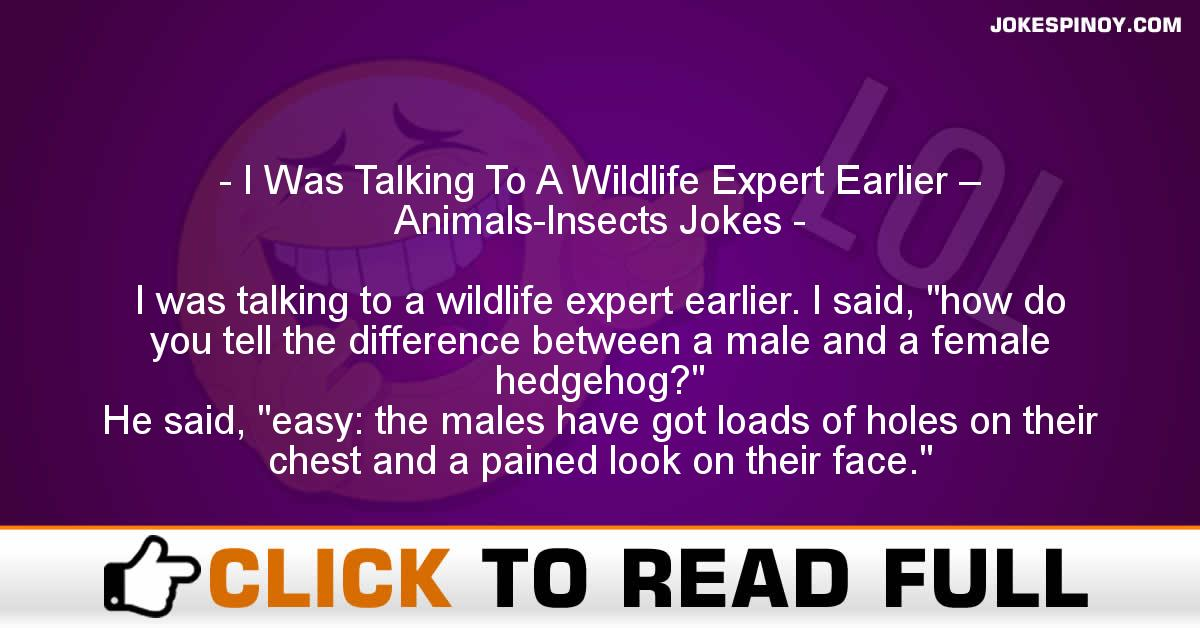 I Was Talking To A Wildlife Expert Earlier – Animals-Insects Jokes