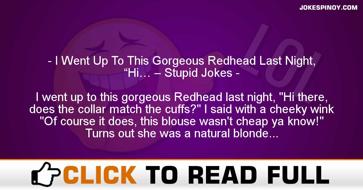 "I Went Up To This Gorgeous Redhead Last Night, ""Hi… – Stupid Jokes"