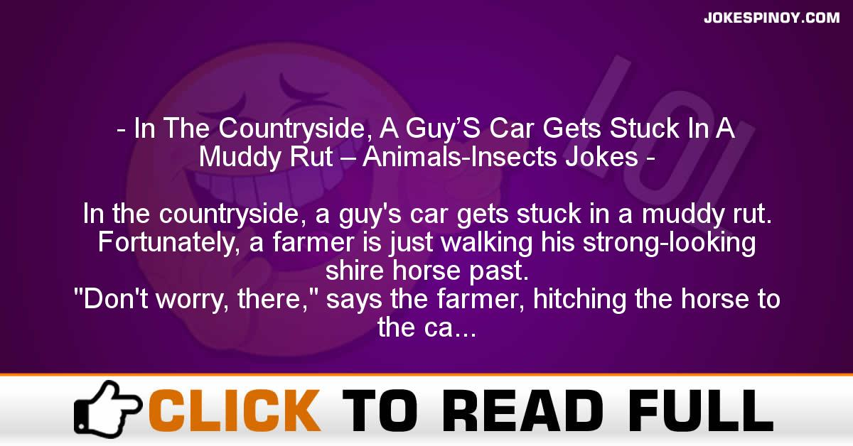 In The Countryside, A Guy'S Car Gets Stuck In A Muddy Rut – Animals-Insects Jokes