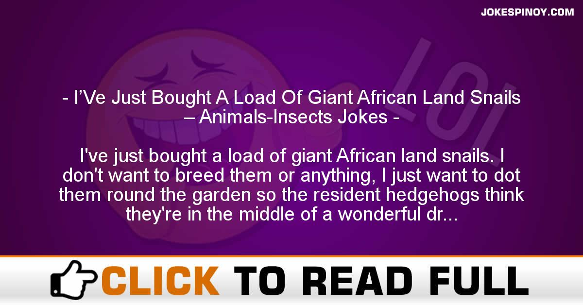 I'Ve Just Bought A Load Of Giant African Land Snails – Animals-Insects Jokes