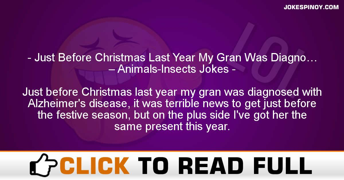 Just Before Christmas Last Year My Gran Was Diagno… – Animals-Insects Jokes