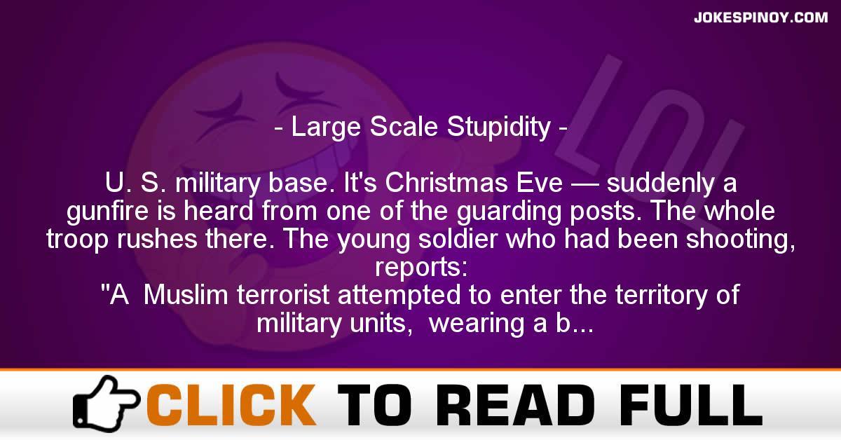 Large Scale Stupidity