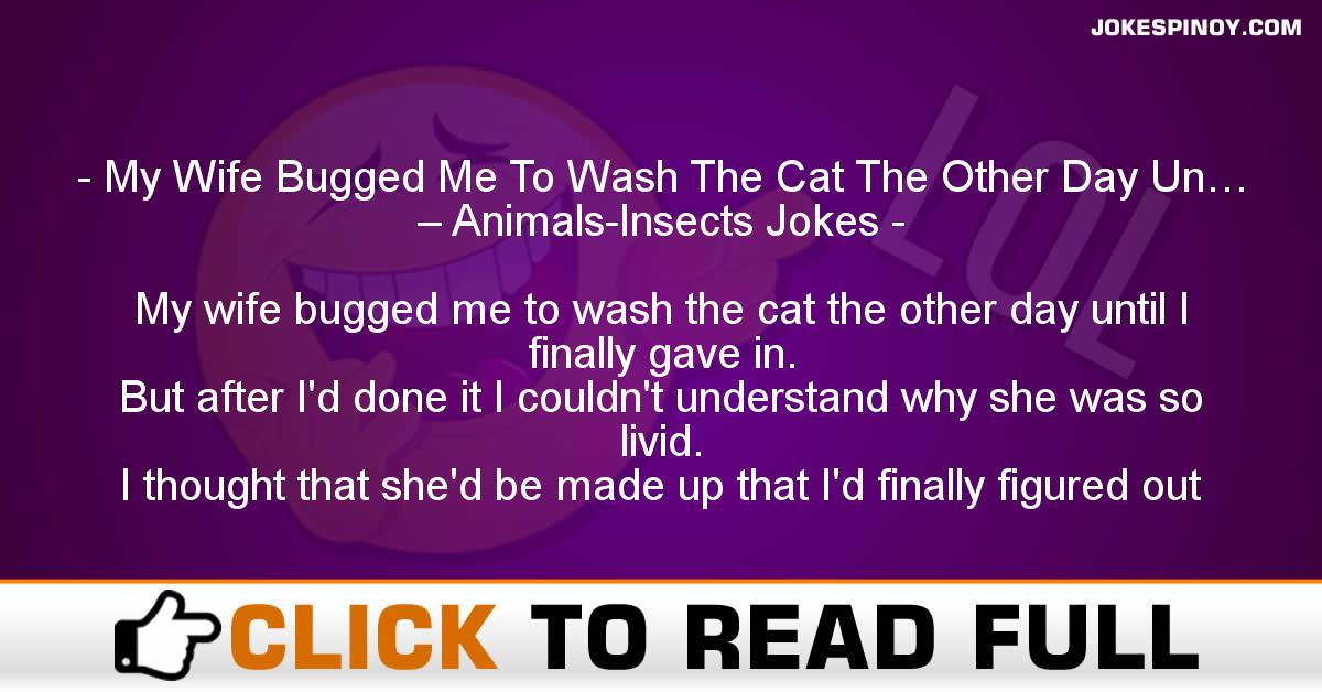 My Wife Bugged Me To Wash The Cat The Other Day Un… – Animals-Insects Jokes