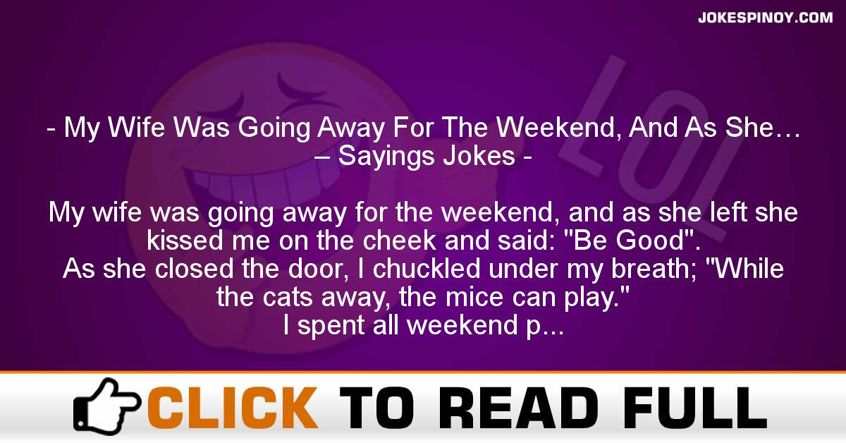 My Wife Was Going Away For The Weekend, And As She… – Sayings Jokes