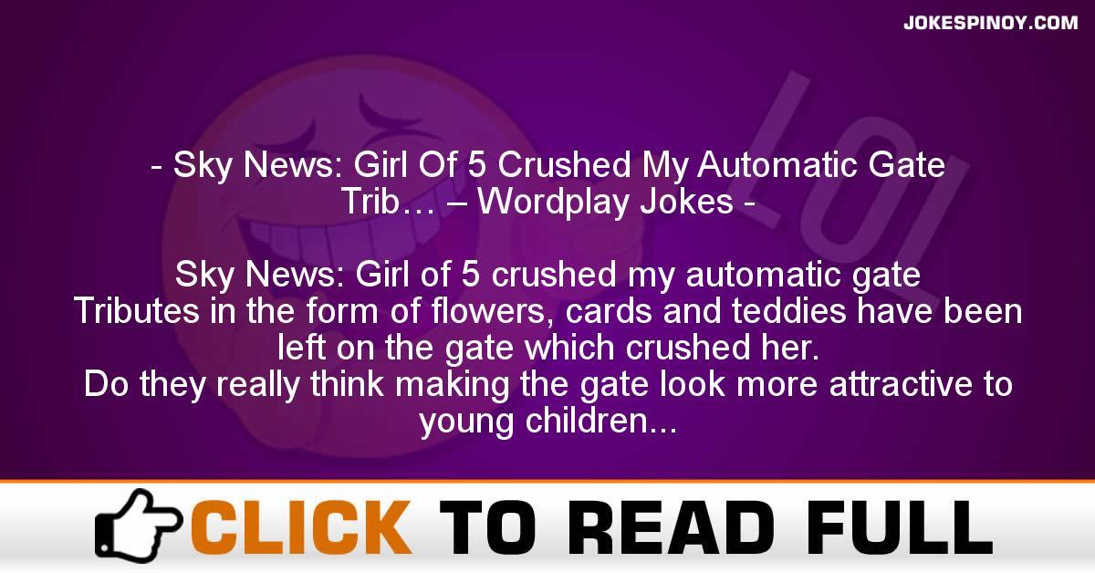 Sky News: Girl Of 5 Crushed My Automatic Gate Trib… – Wordplay Jokes