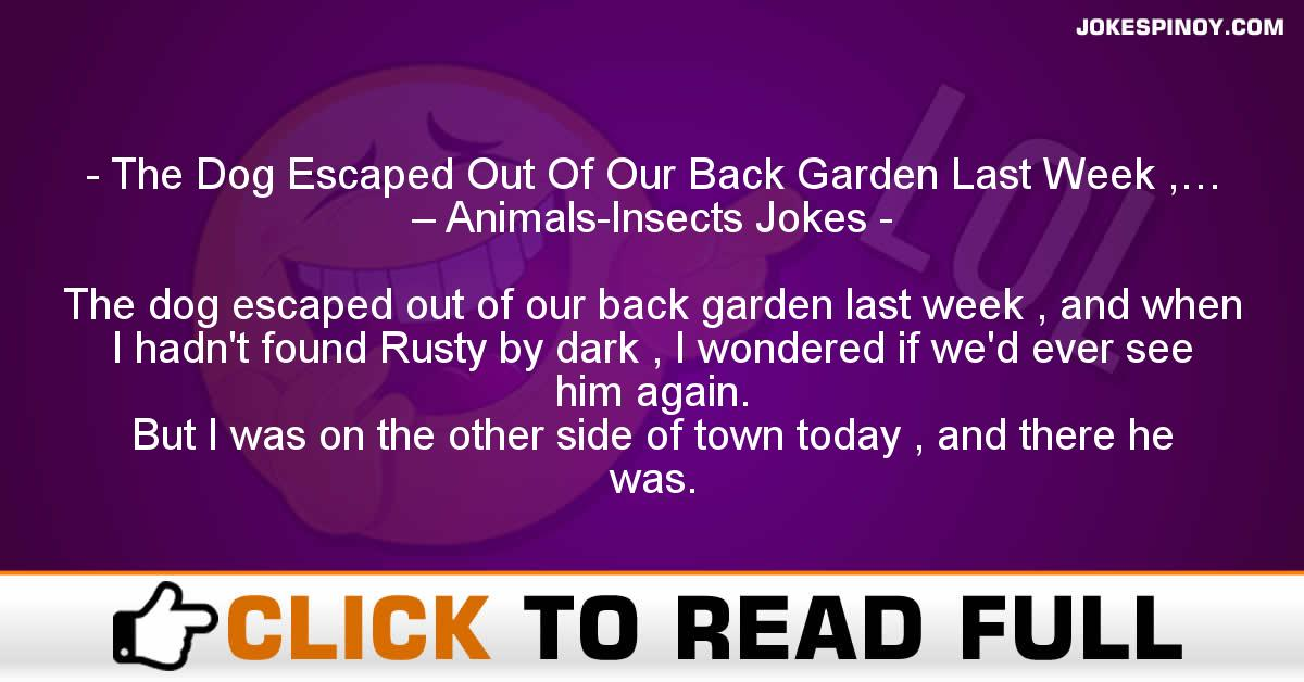 The Dog Escaped Out Of Our Back Garden Last Week ,… – Animals-Insects Jokes