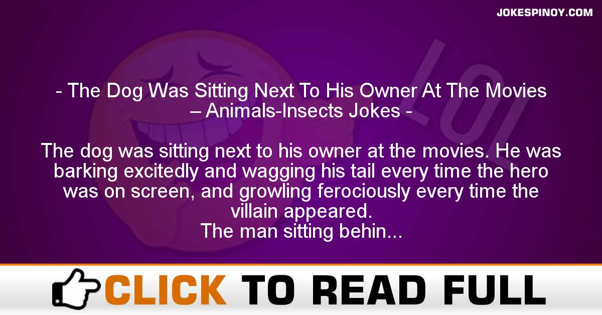 The Dog Was Sitting Next To His Owner At The Movies – Animals-Insects Jokes