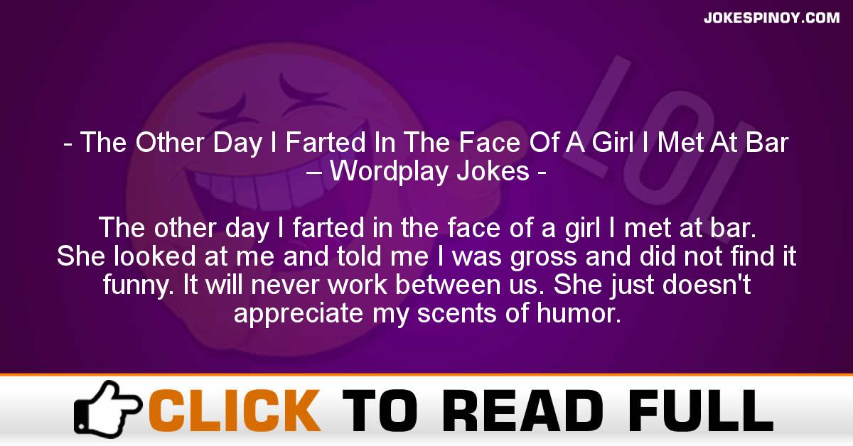 The Other Day I Farted In The Face Of A Girl I Met At Bar – Wordplay Jokes