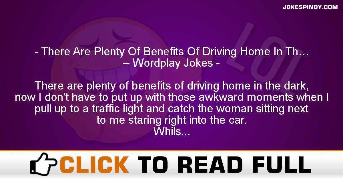 There Are Plenty Of Benefits Of Driving Home In Th… – Wordplay Jokes