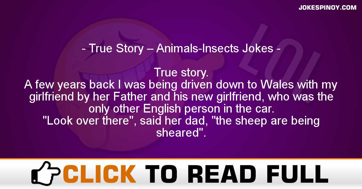 True Story – Animals-Insects Jokes