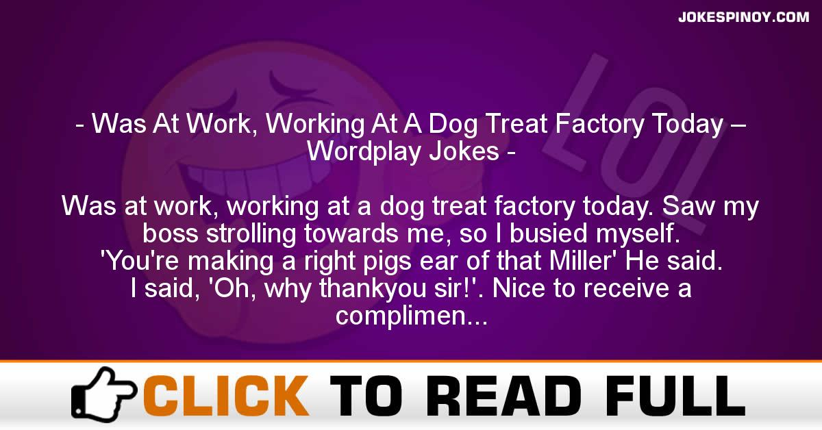 Was At Work, Working At A Dog Treat Factory Today – Wordplay Jokes
