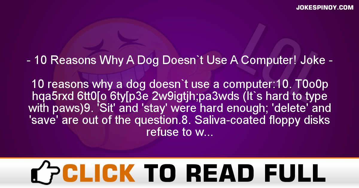 10 Reasons Why A Dog Doesn`t Use A Computer! Joke