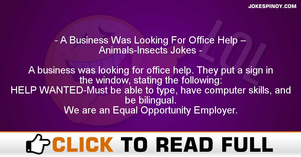 A Business Was Looking For Office Help – Animals-Insects Jokes