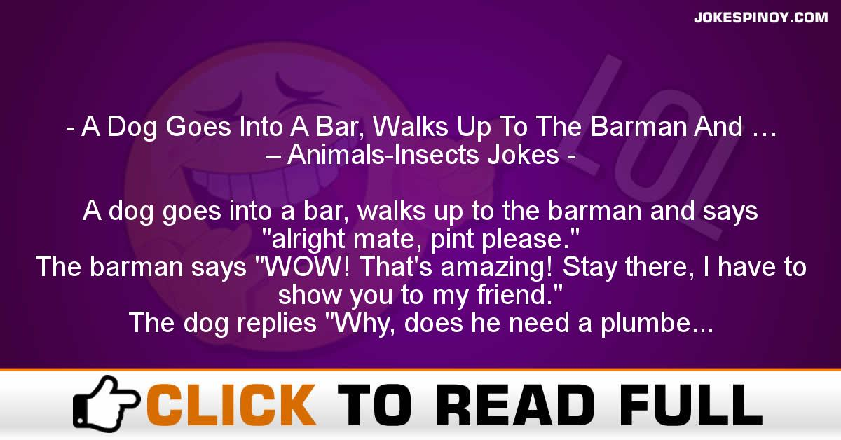 A Dog Goes Into A Bar, Walks Up To The Barman And … – Animals-Insects Jokes