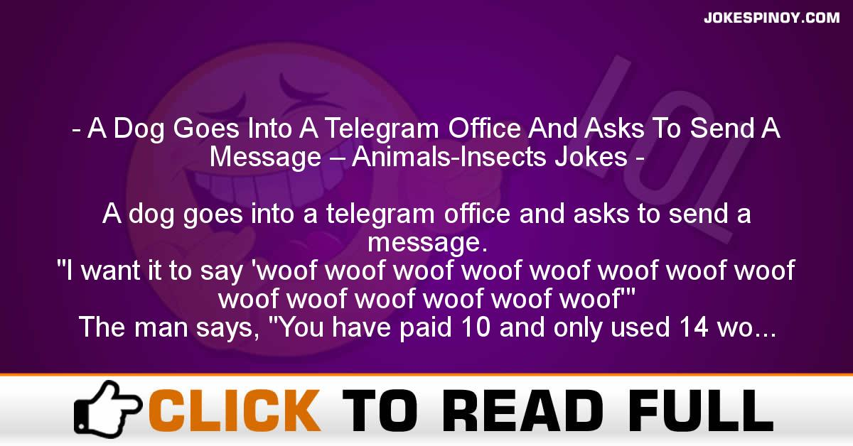 A Dog Goes Into A Telegram Office And Asks To Send A Message – Animals-Insects Jokes