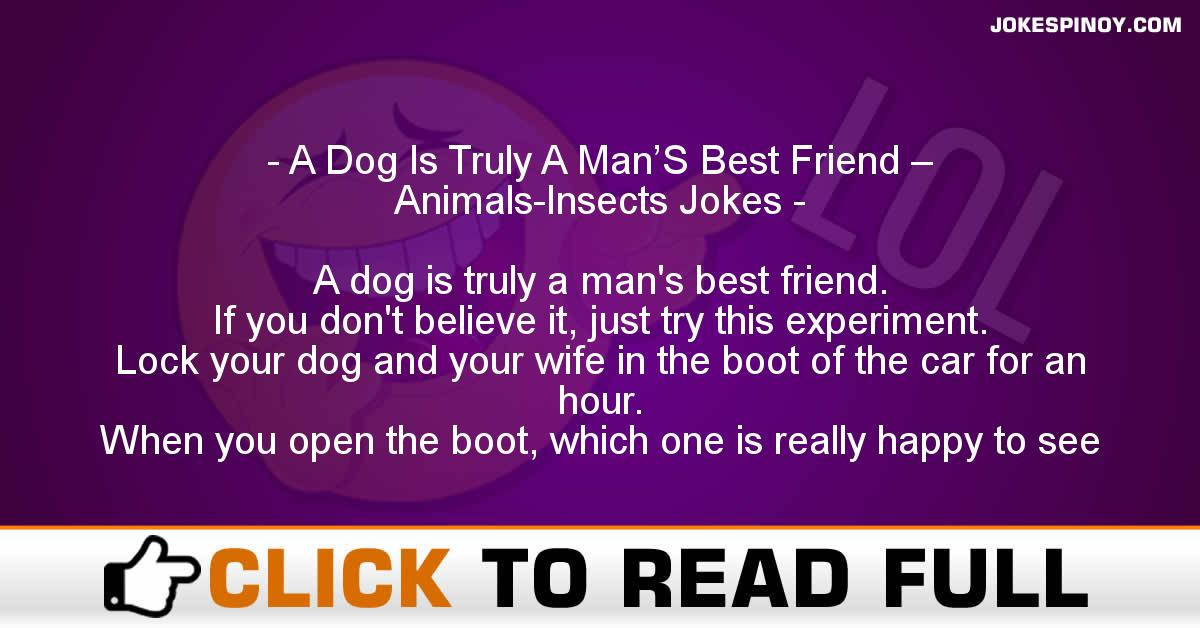 A Dog Is Truly A Man'S Best Friend – Animals-Insects Jokes
