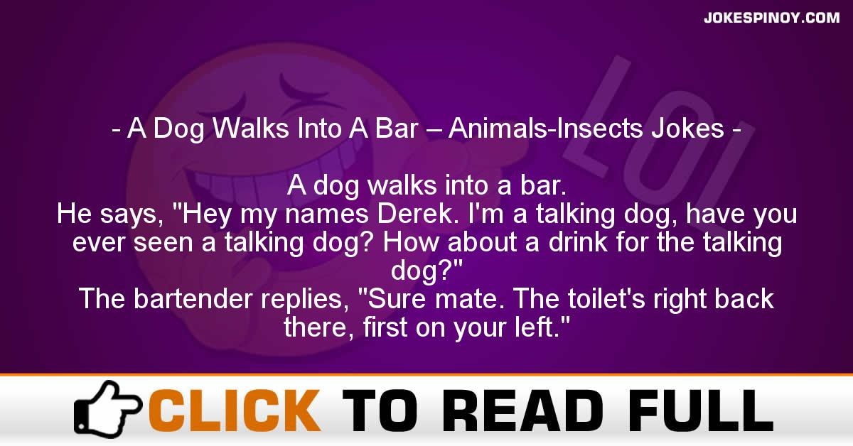 A Dog Walks Into A Bar – Animals-Insects Jokes