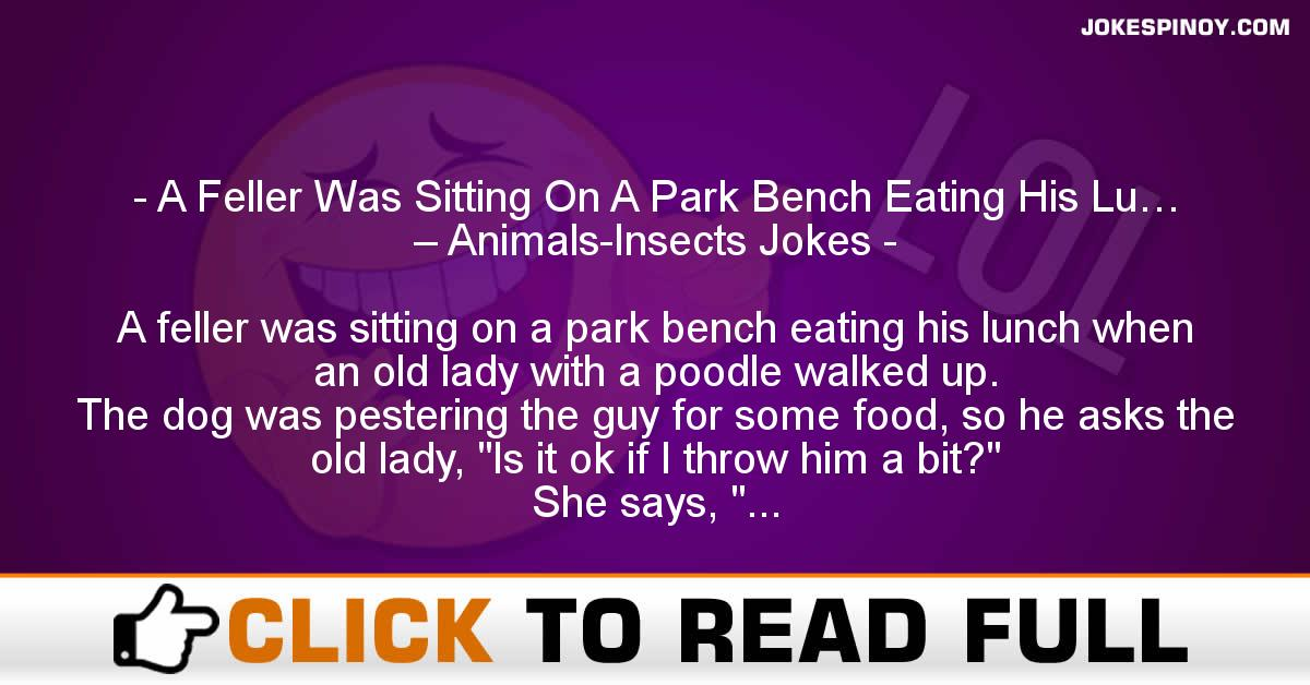 A Feller Was Sitting On A Park Bench Eating His Lu… – Animals-Insects Jokes