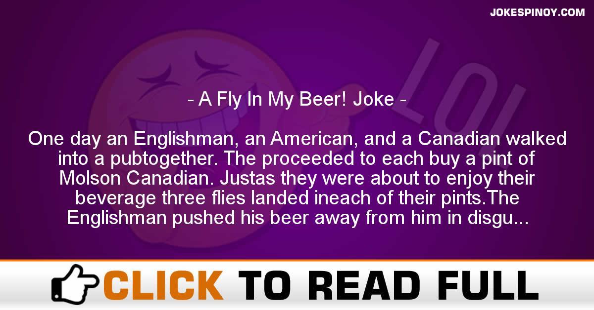 A Fly In My Beer! Joke
