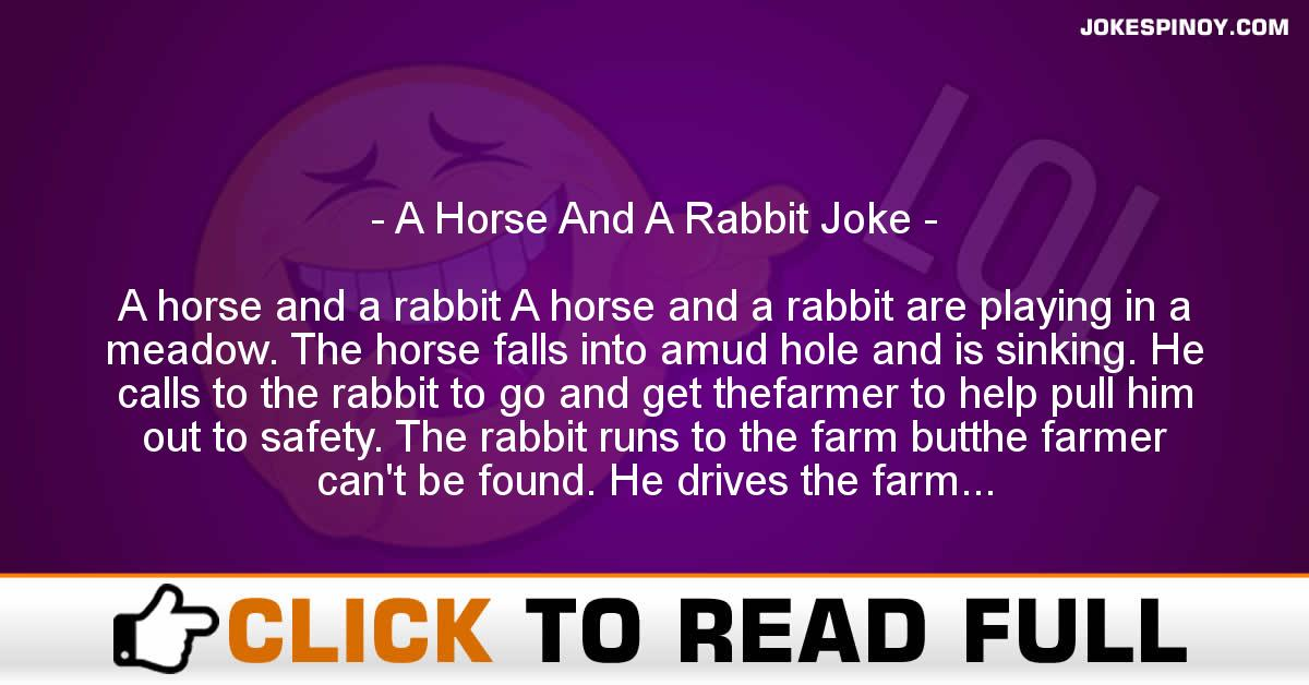 A Horse And A Rabbit Joke