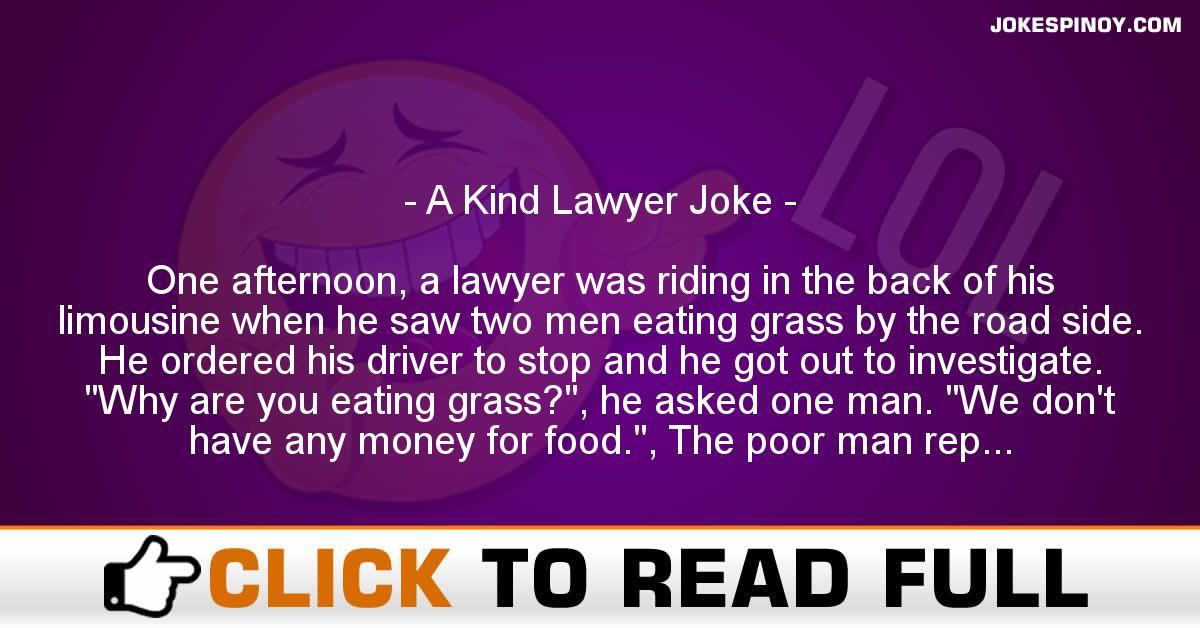 A Kind Lawyer Joke