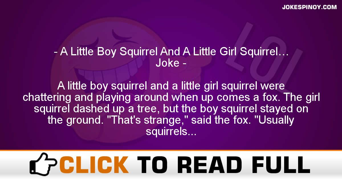 A Little Boy Squirrel And A Little Girl Squirrel… Joke