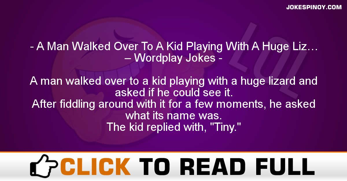 A Man Walked Over To A Kid Playing With A Huge Liz… – Wordplay Jokes