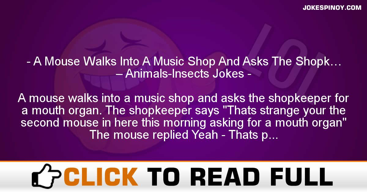 A Mouse Walks Into A Music Shop And Asks The Shopk… – Animals-Insects Jokes