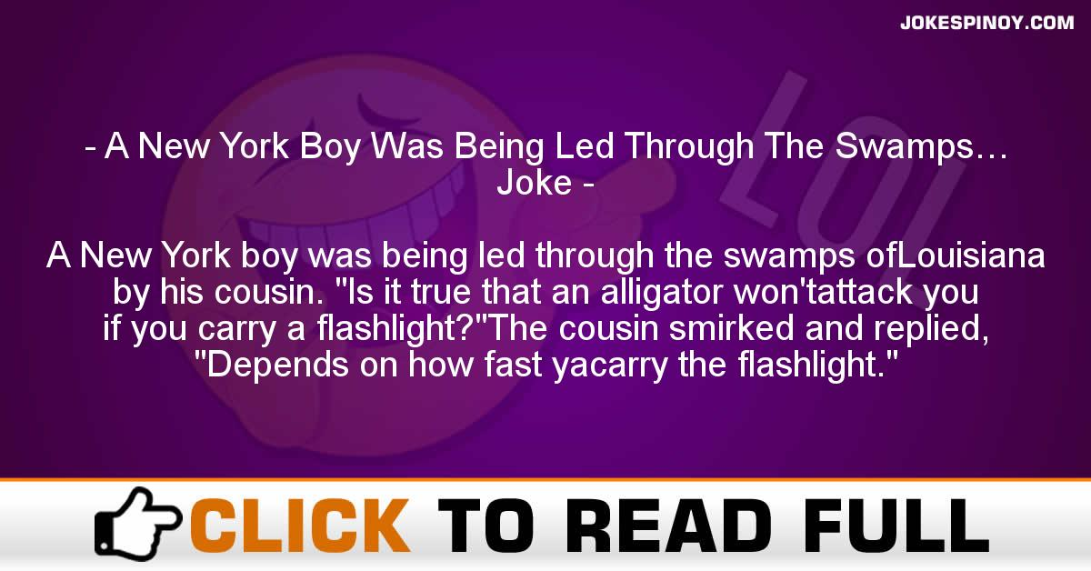 A New York Boy Was Being Led Through The Swamps… Joke