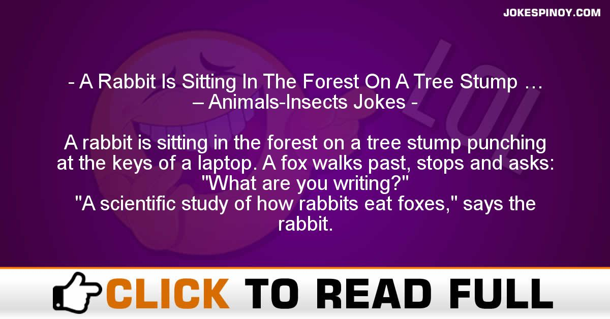A Rabbit Is Sitting In The Forest On A Tree Stump … – Animals-Insects Jokes