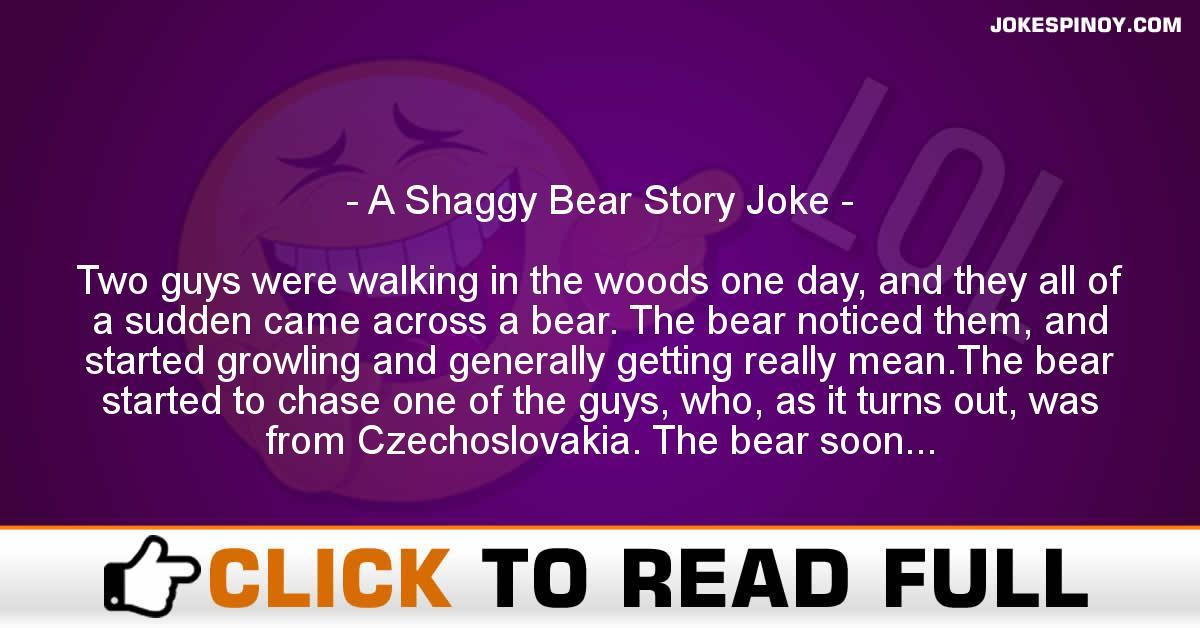 A Shaggy Bear Story Joke