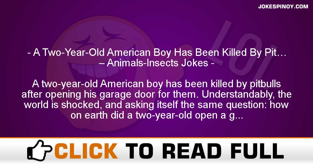 A Two-Year-Old American Boy Has Been Killed By Pit… – Animals-Insects Jokes
