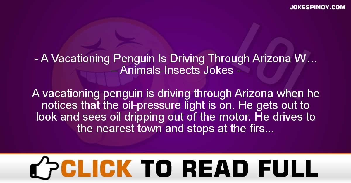 A Vacationing Penguin Is Driving Through Arizona W… – Animals-Insects Jokes