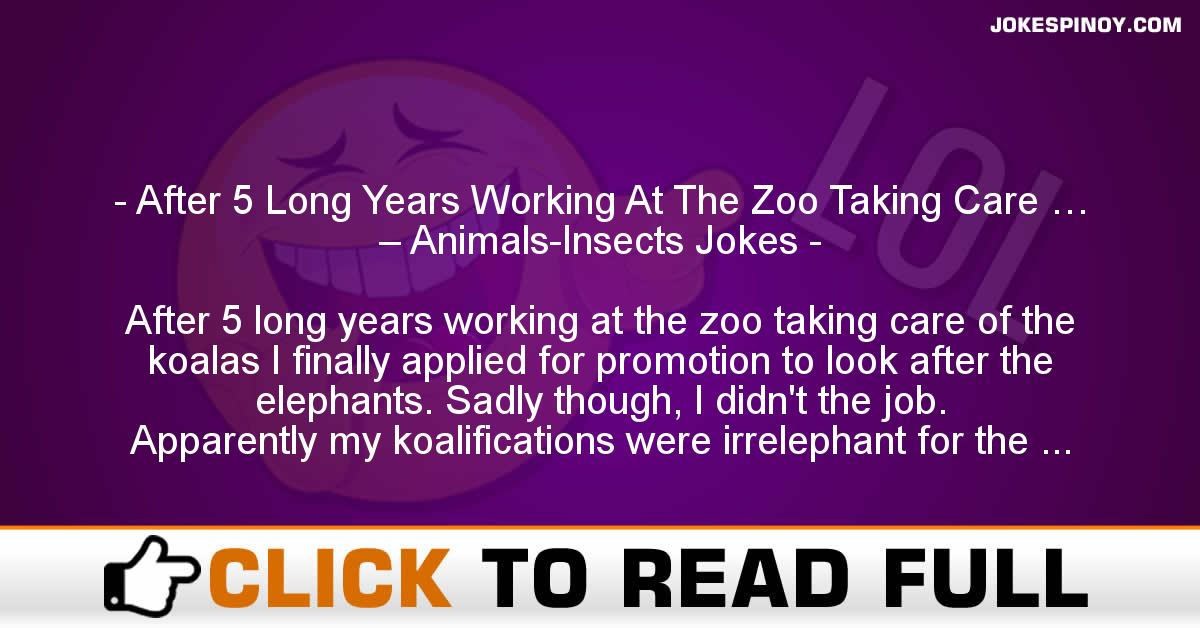 After 5 Long Years Working At The Zoo Taking Care … – Animals-Insects Jokes