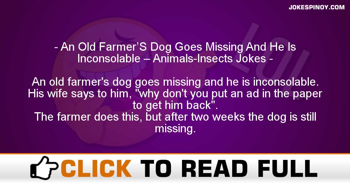An Old Farmer'S Dog Goes Missing And He Is Inconsolable – Animals-Insects Jokes