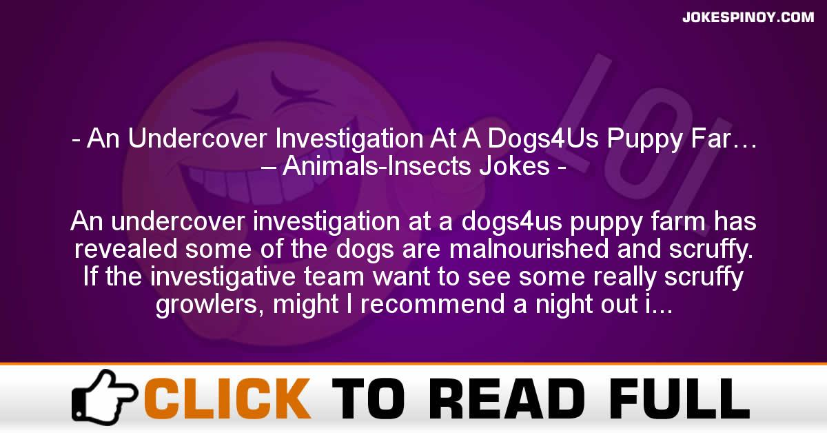 An Undercover Investigation At A Dogs4Us Puppy Far… – Animals-Insects Jokes
