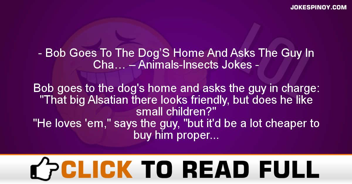 Bob Goes To The Dog'S Home And Asks The Guy In Cha… – Animals-Insects Jokes